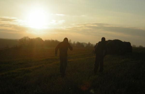 Два парня бегут за закатом