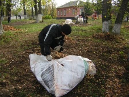 Уборка сухих листьев на территории
