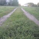 Проселочная дорога не асфальтирована