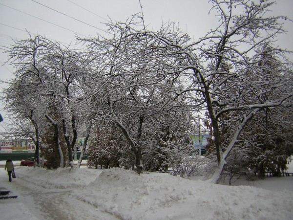 Февраль. Снег. Праздник.