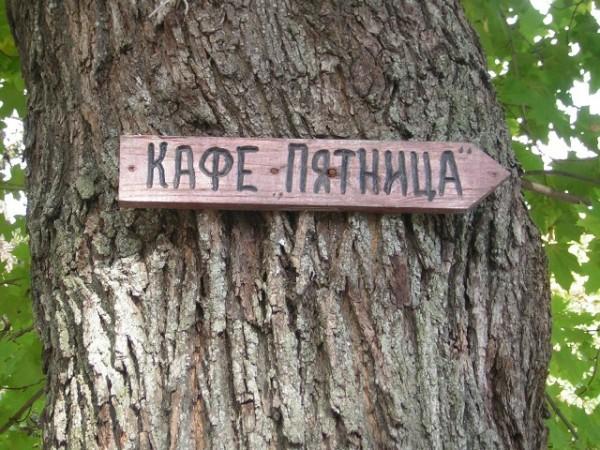 Даже на деревьях уже вешают