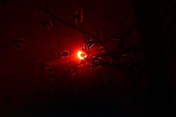 Солнечное затмение 20 марта 2015 года.