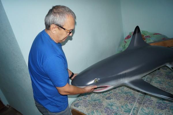 Акула из Черного моря