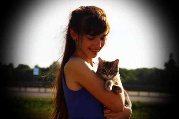 Котик, пародистый, дорога, переезд, девушка, мяу